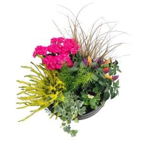Composition fleurie diamètre 32