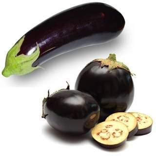 6 plants d'aubergine