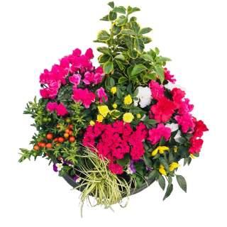 Composition fleurie diamètre 46